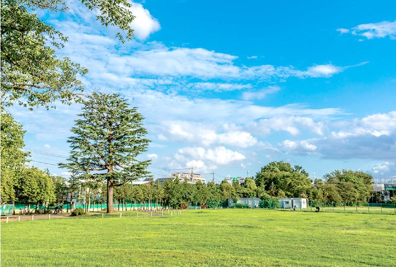 富士見ヶ丘運動公園